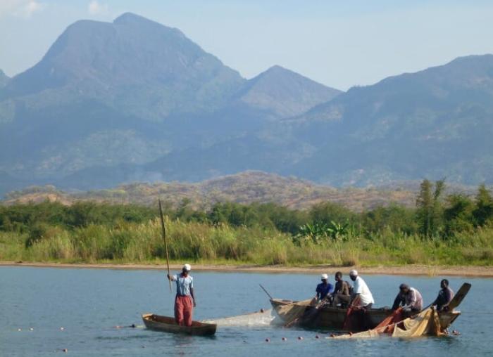 Lake Tanganyika, one of the African Great Lakes.